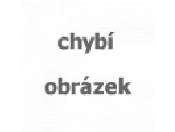 lyžařské vázání TYROLIA binding Attack2 13 GW brake 110 [A], red, AKCE