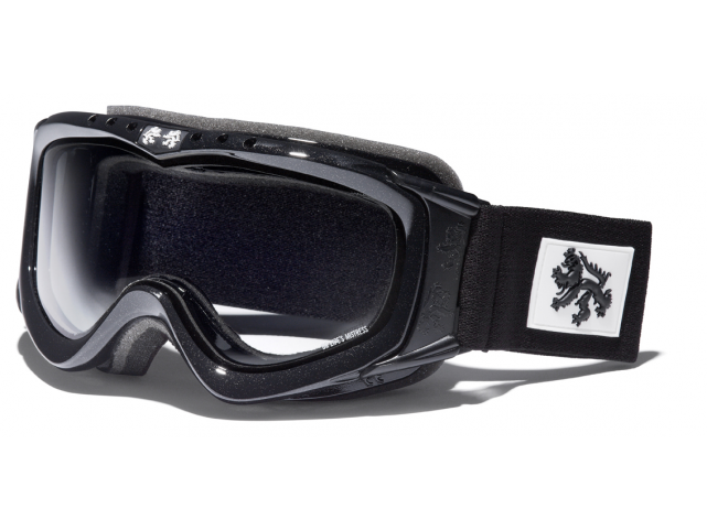 Lyžařské brýle DR.ZIPE MISTRESS L II Metallic Black Clear model 2013/14